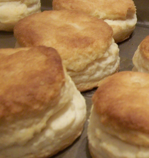 biscuits1a.jpg