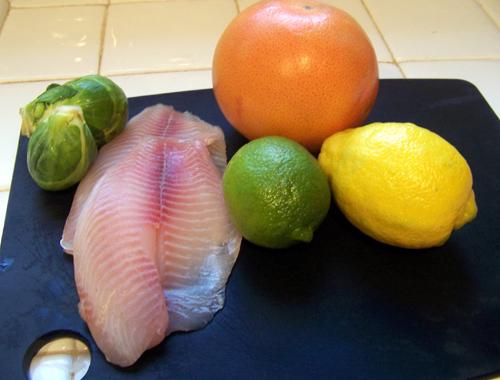 citrusfish